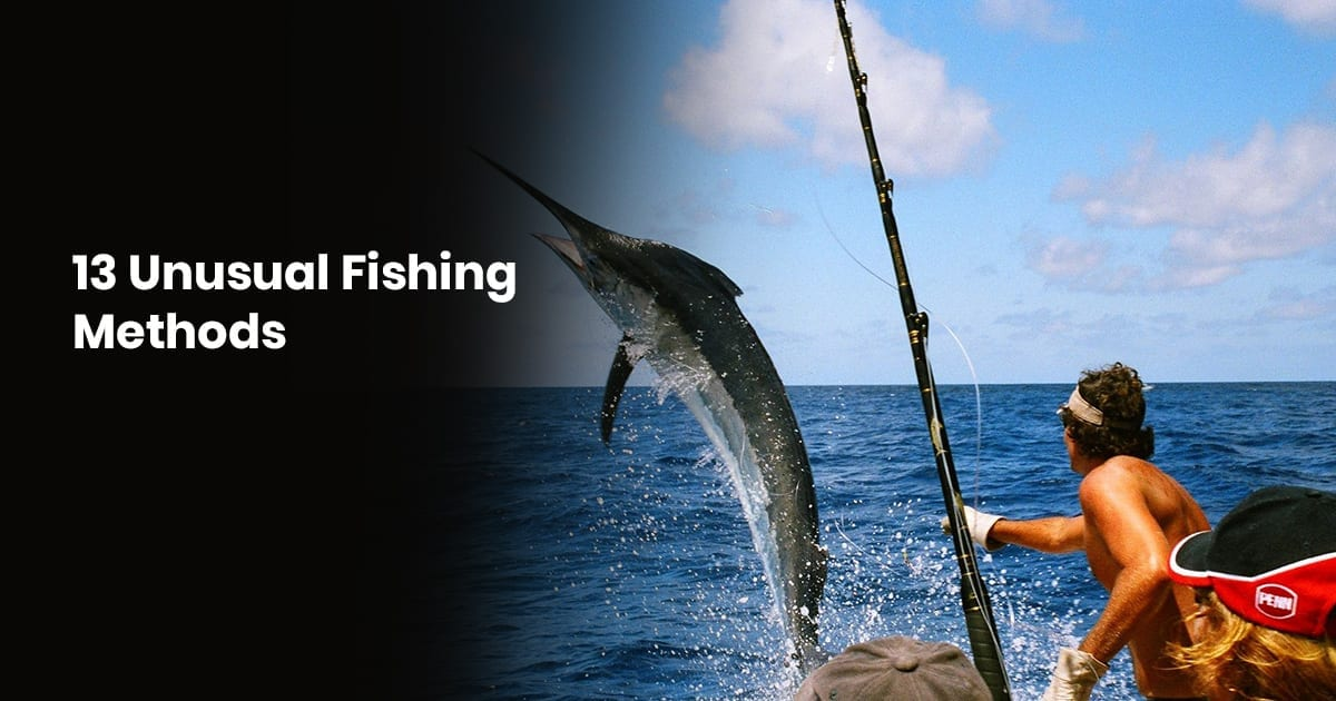 13 Unusual Fishing Methods From Around The World