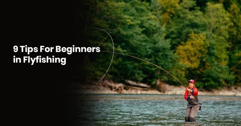 9 Tips For Beginners in Fly fishing