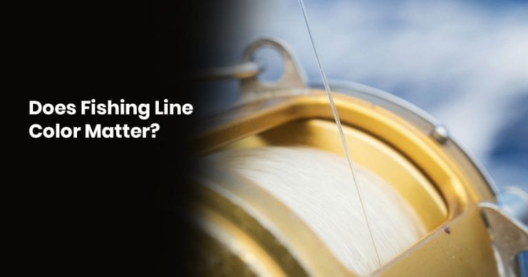 Does Fishing Line Color Matter?