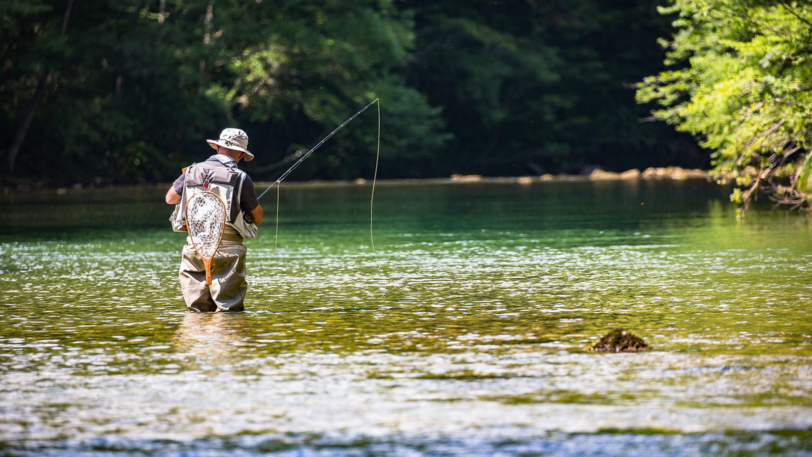 Experience freshwater fishing