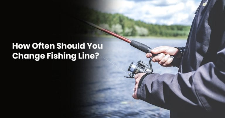 How Often Should You Change A Fishing Line?