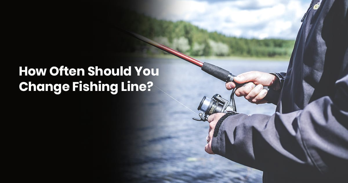 How Often Should You Change A Fishing Line