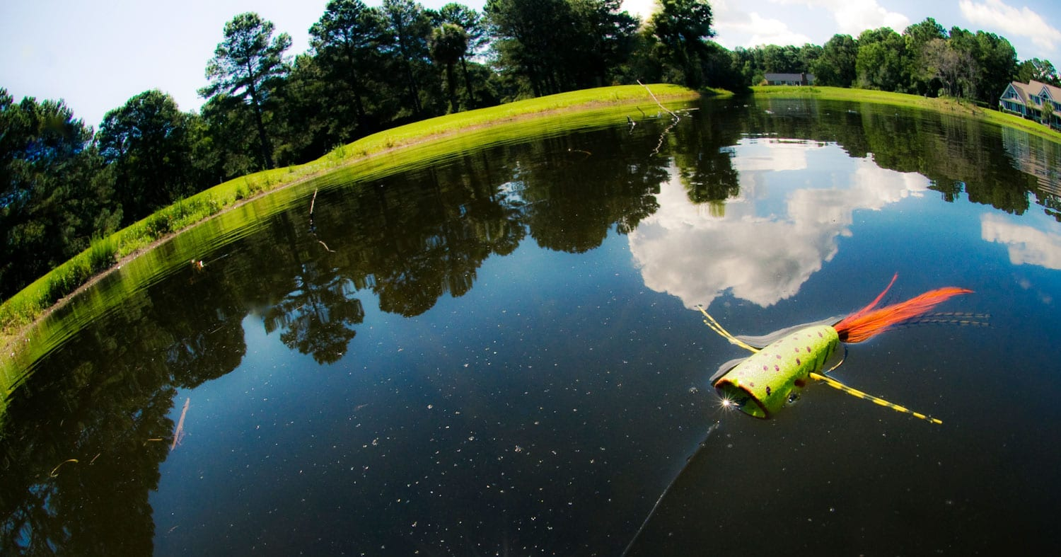 Fishing in a Pond