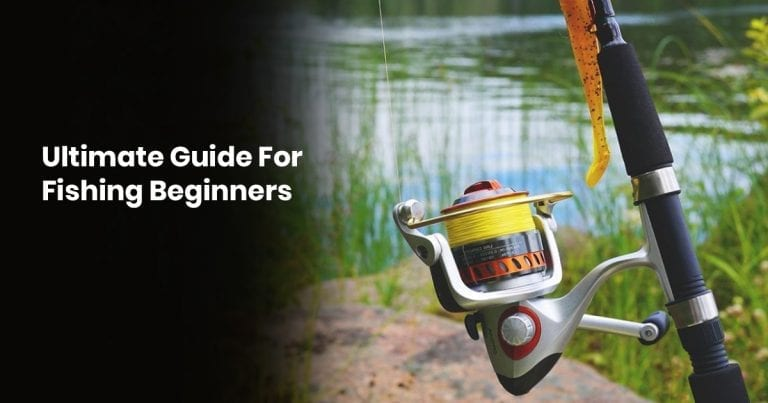 Ultimate Guide for Fishing for Beginners