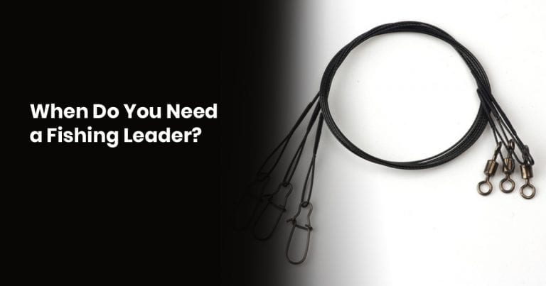 When do you need a Fishing Leader?