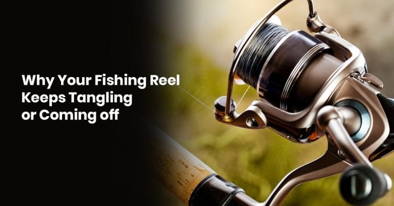 Why Your Fishing Reel Keeps Tangling or Coming off