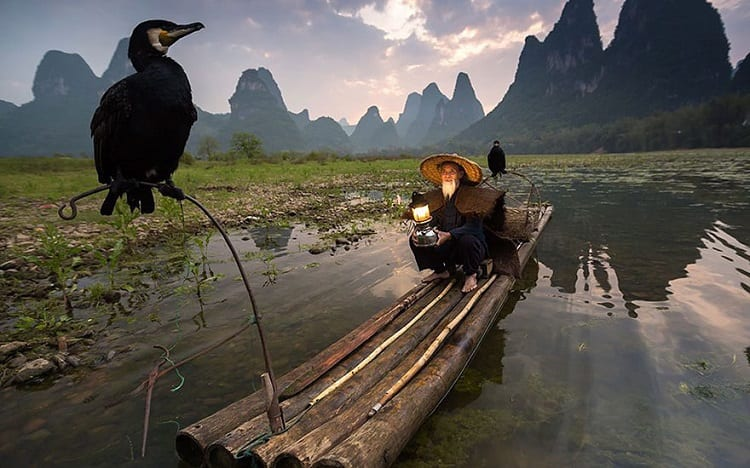 fisherman and his cormoran