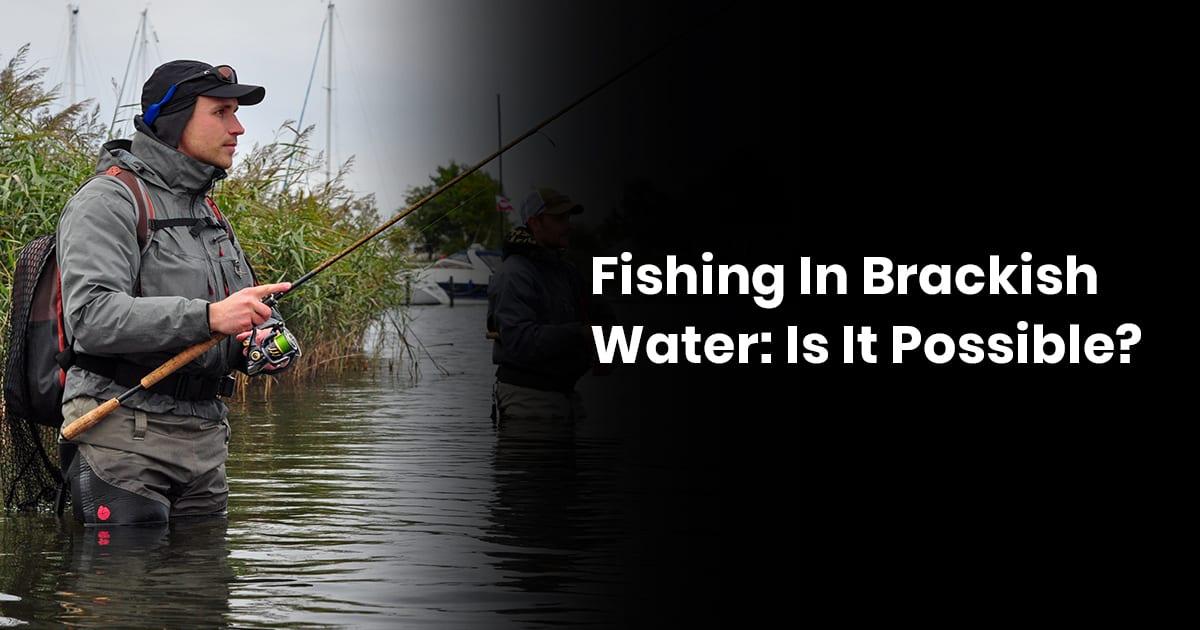 Fishing In Brackish Water: Is It Possible?