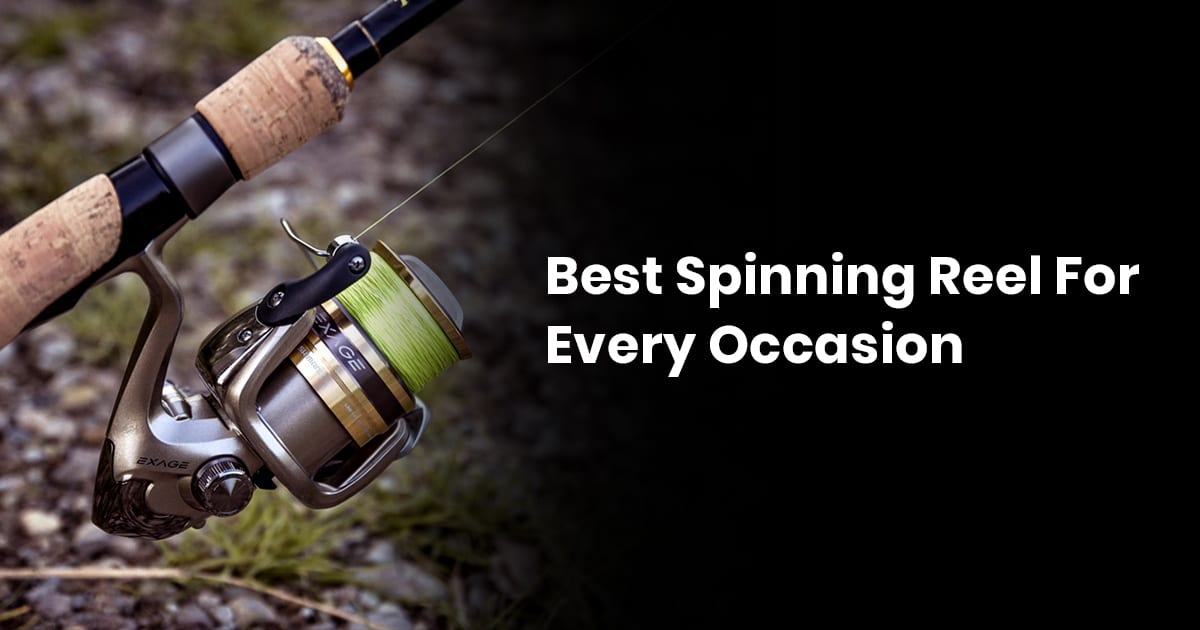 Best Spinning Reel For Every Occasion