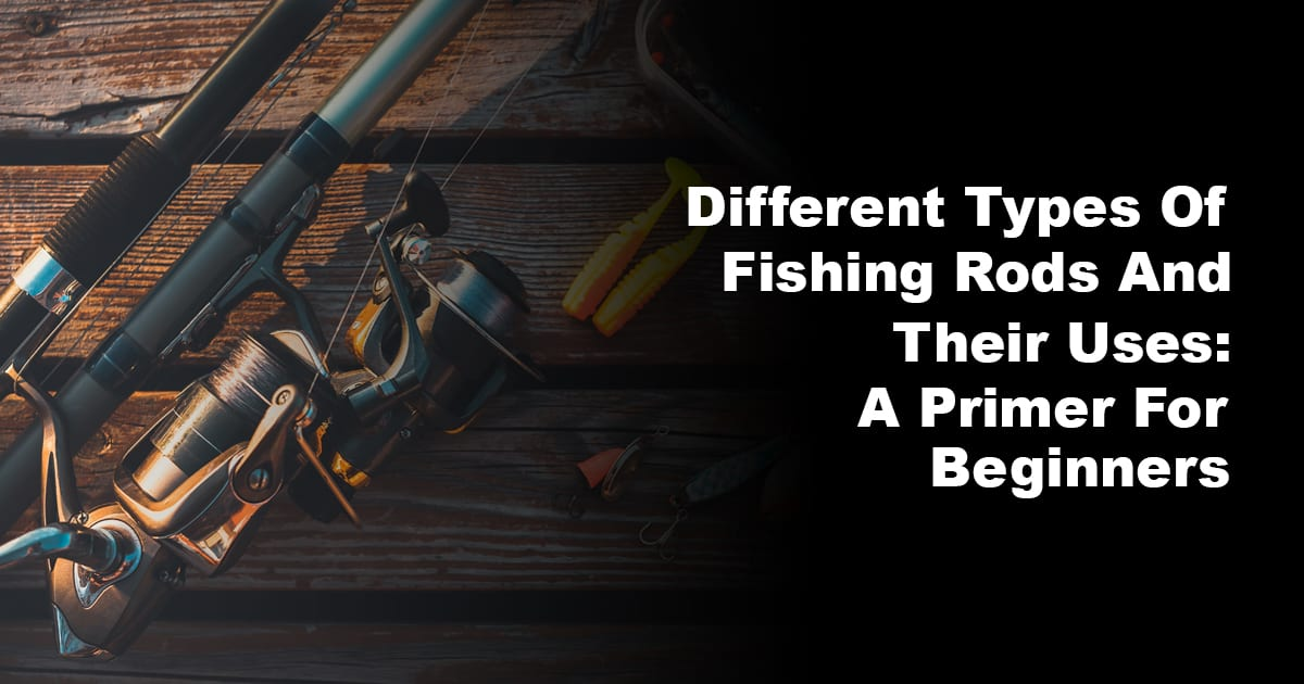 Different Types Of Fishing Rods And Their Uses A Primer For Beginners