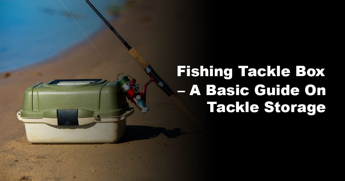 Fishing Tackle Box – A Basic Guide On Tackle Storage