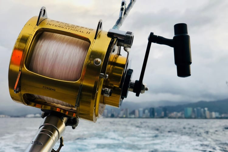 The A - Z Guide of Catfish Reels - Everything You Need to Know 3