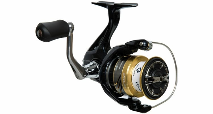 The 5 Best Saltwater Spinning Reels for the Money in 2020 2
