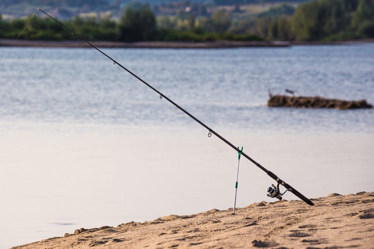 Different Types of Fishing Rods and Their Uses: A Primer for Beginners 2
