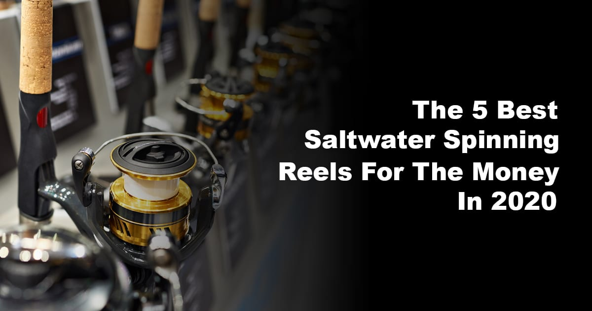 The 5 Best Saltwater Spinning Reels For The Money In 2020