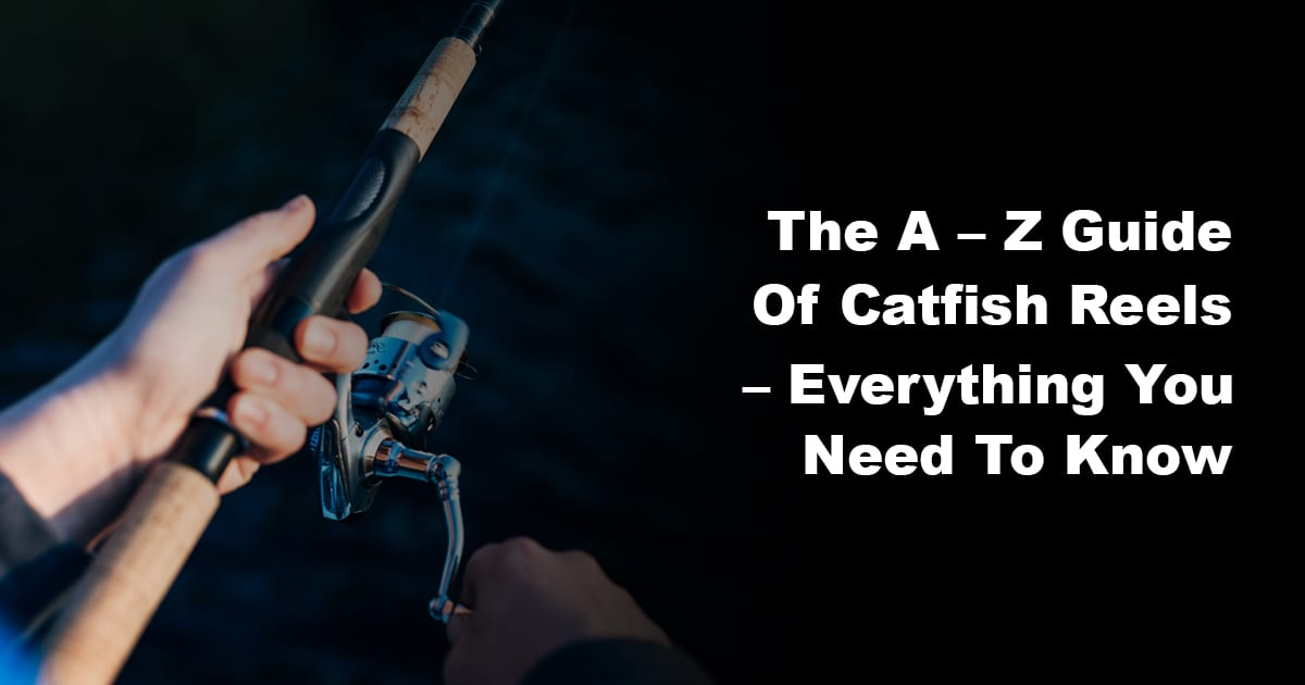 The A - Z Guide of Catfish Reels - Everything You Need to Know 1