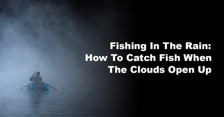 Fishing In The Rain: How To Catch Fish When The Clouds Open Up