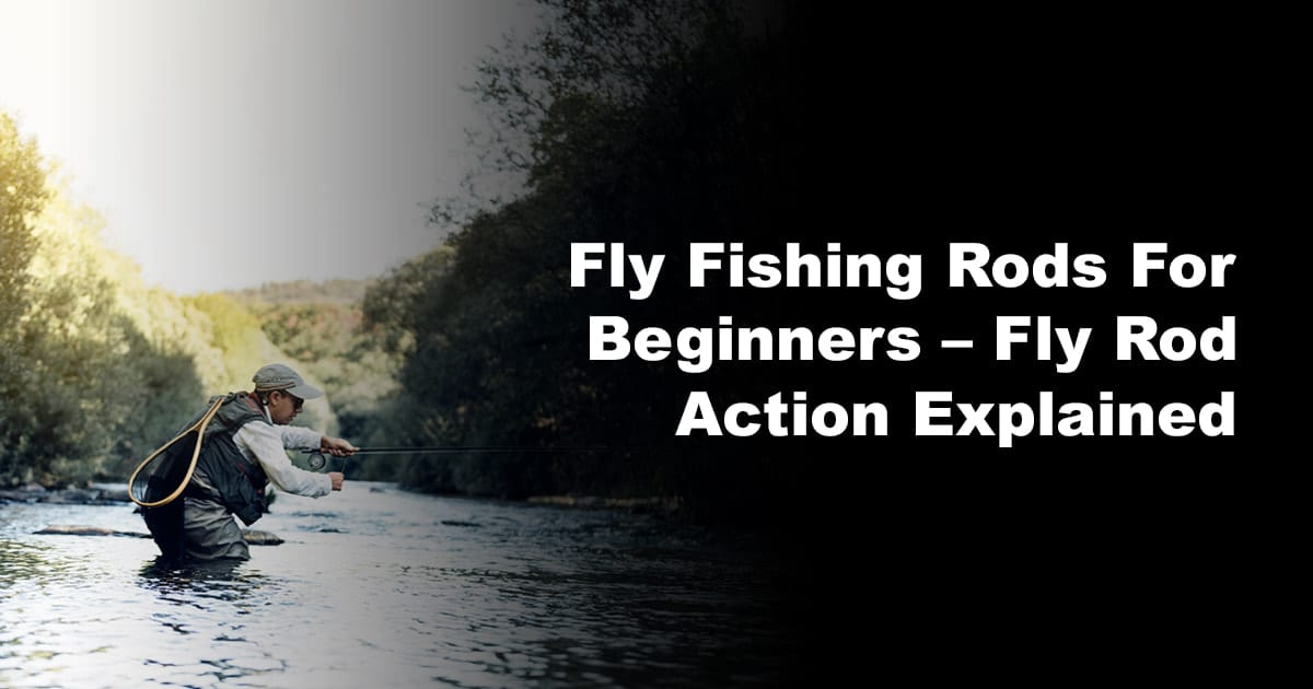 Fly Fishing Rods For Beginners – Fly Rod Action Explained