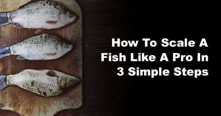 How to Scale a Fish Like a Pro in 3 Simple Steps