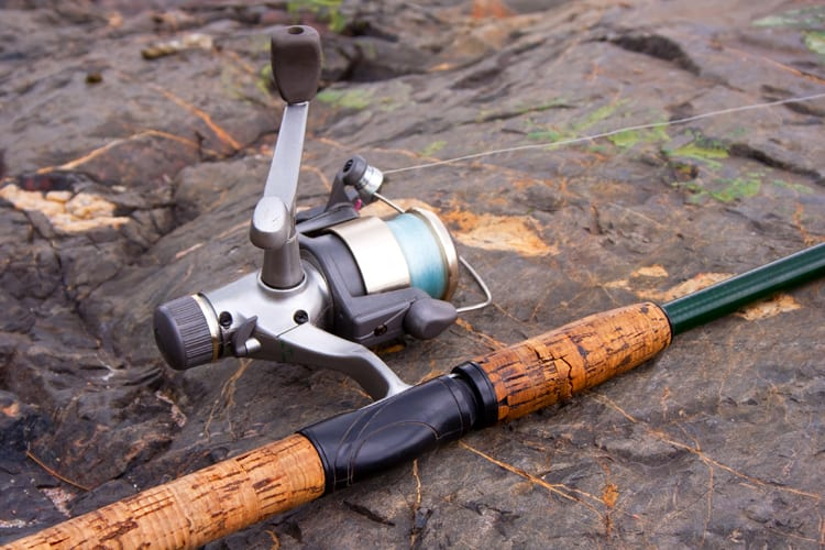 How to Use a Spinning Reel like a Professional Angler - 5 Pro Tips 2