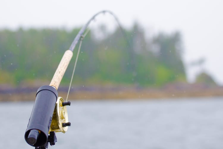 Fishing In The Rain: How To Catch Fish When The Clouds Open Up 1