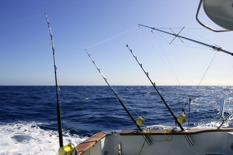 Choosing the Right Tuna Reels for You - Trolling, Spinning, Jigging & Popping 2