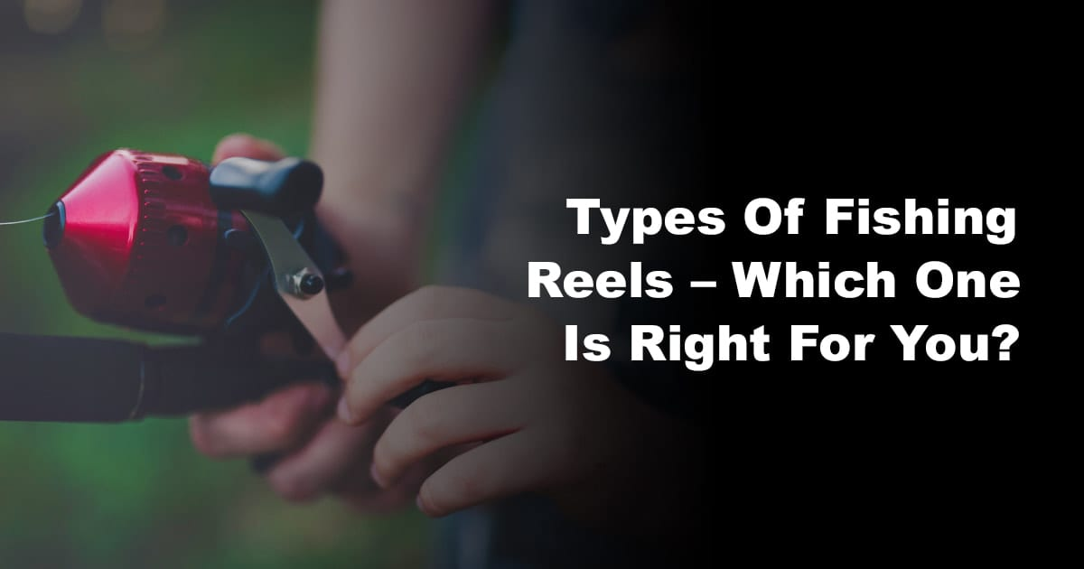Types Of Fishing Reels – Which One Is Right For You