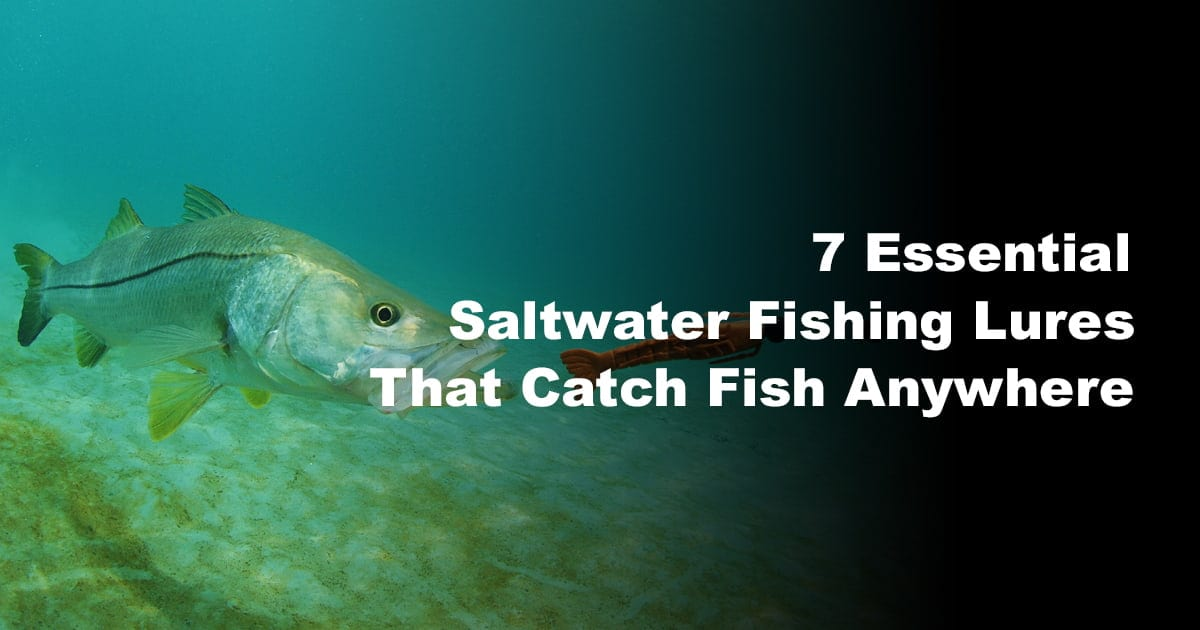 7 Essential Saltwater Fishing Lures That Catch Fish Anywhere
