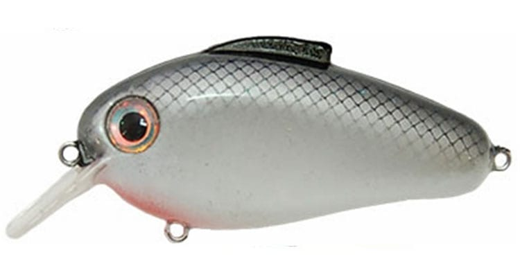 8 Bass Fishing Lures Every Angler Should Have in Their Tackle Box 12