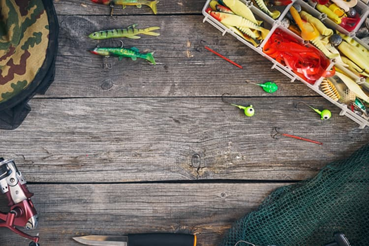 The Most Common Types of Fishing Lures - All You Need to Know 1