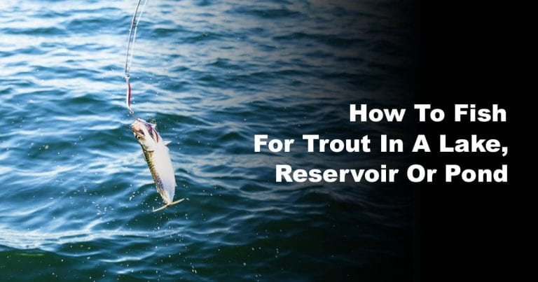 How To Fish For Trout In A Lake, Reservoir Or Pond