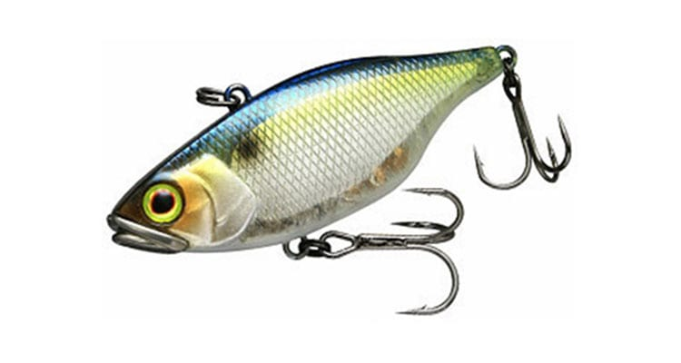 8 Bass Fishing Lures Every Angler Should Have in Their Tackle Box 10