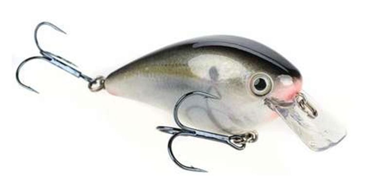 8 Bass Fishing Lures Every Angler Should Have in Their Tackle Box 11