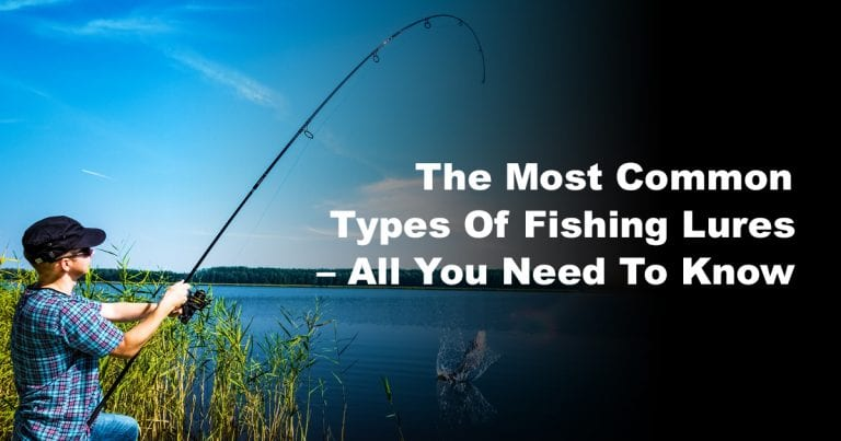 The Most Common Types Of Fishing Lures