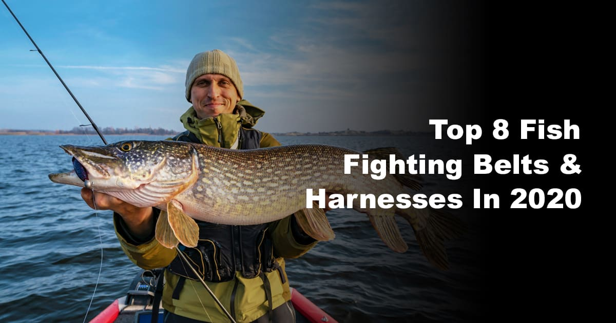 Top 8 Fish Fighting Belts & Harnesses