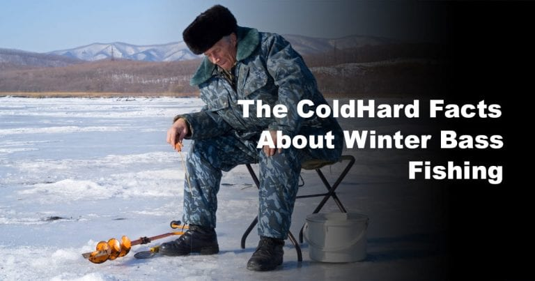 The ColdHard Facts About Winter Bass Fishing