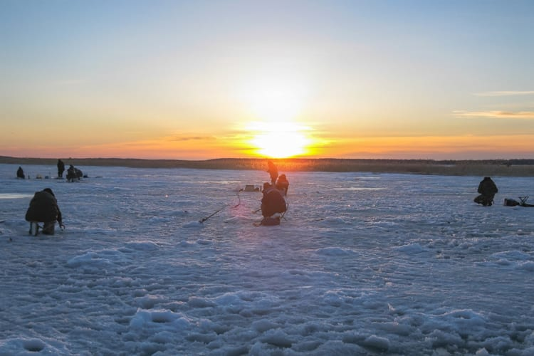 Ice Fishing with a Flasher: How to Read an Ice Fishing Flasher 2
